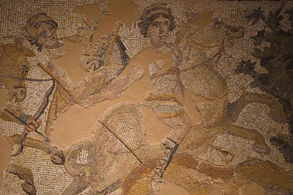 Amazonky, mozaika